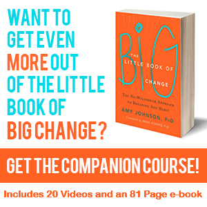 Little Book of Big Change Companion Course